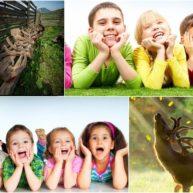 Nhung hươu có tác dụng như thế nào đối với trẻ em 1